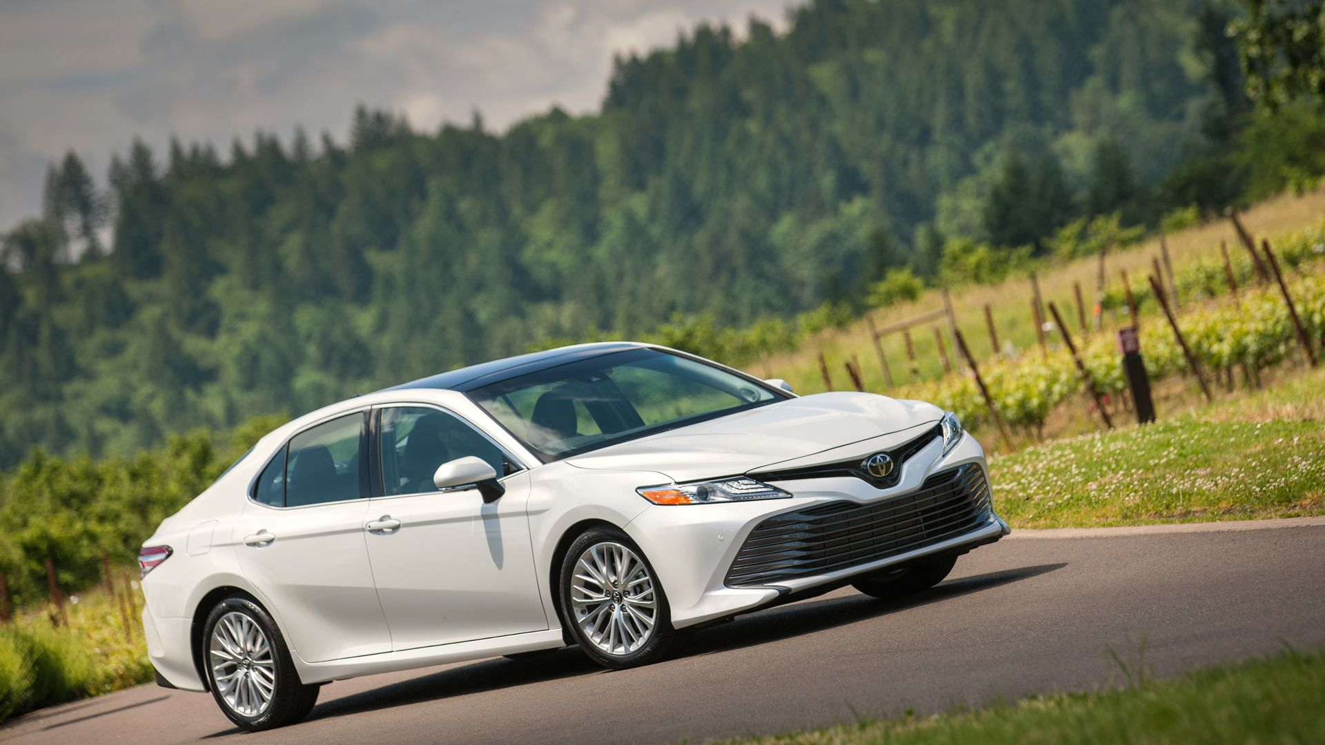 New 2019 Toyota Camry Hybrid First Pictures