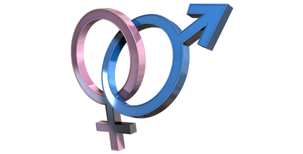 Male And Female Symbol 3d Animated Loop With Alpha Female Symbol Pink Pages Animation