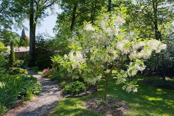 Watnong Gardens Offers Serenity, For Now | Spotlight Gardens