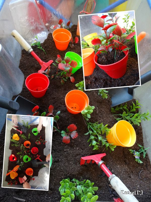 Indoor garden water tray trays and water for Indoor gardening lesson