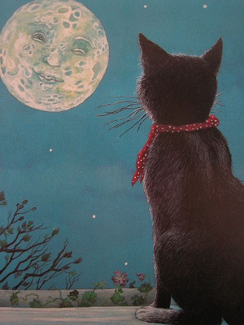 Wynken Cat Black Cat Art Cat Art Cat Theme