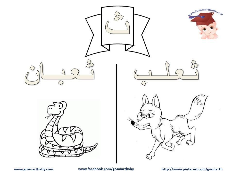 تلوين الحروف العربية حرف الثاء ث Arabic Alphabet Arabic Worksheets Lettering Alphabet