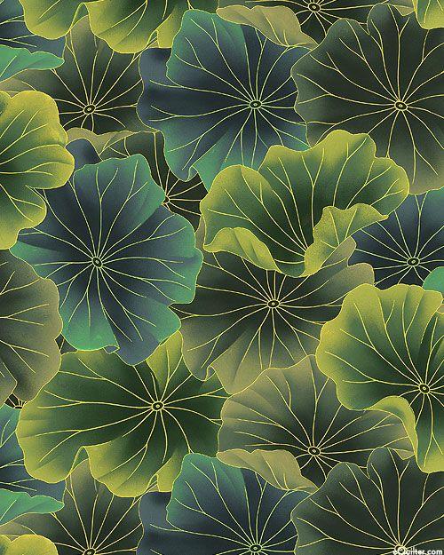 Nobu Fujiyama Sanctuary Ii Lotus Leaves Pattern Pattern Art