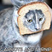 Carrotsandturnip
