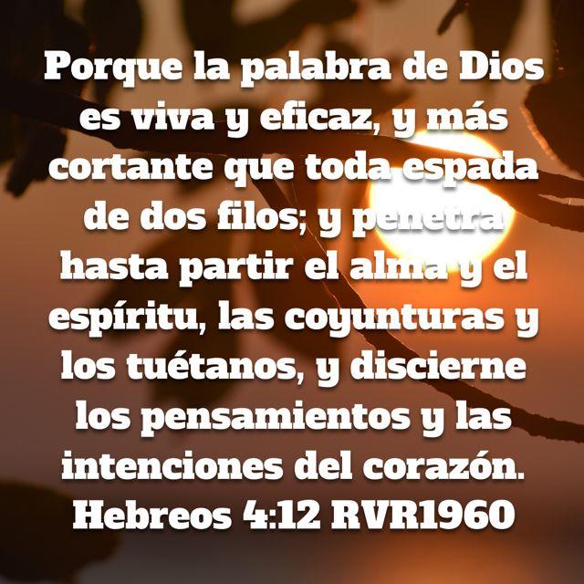 Versiculos De La Biblia De Animo: Pin De Jeanneth Fallas Gonzalez En Versiculos Biblicos