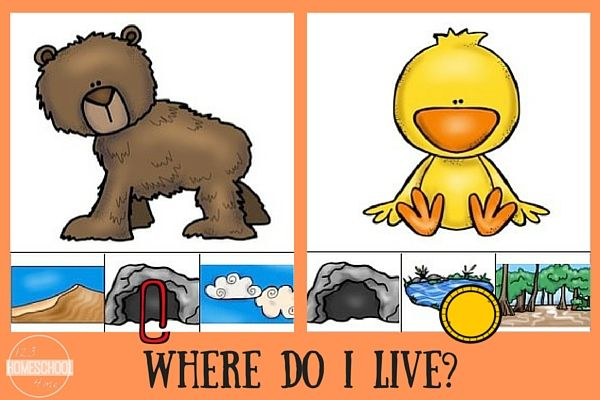 Animal Homes For Kids Clip It Cards Animal Habitats Preschool Animal Habitats Animal Lessons