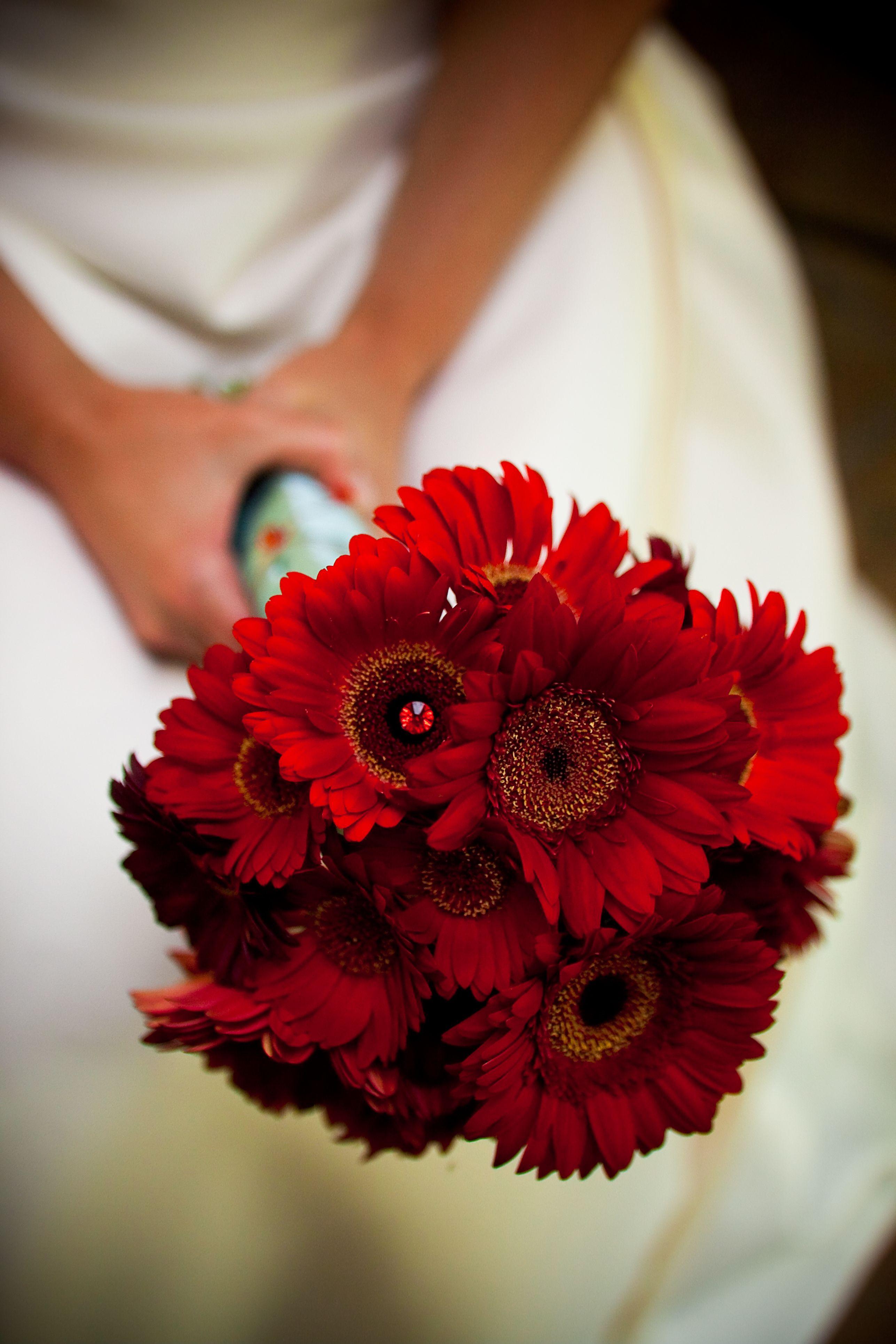 Fiorire Custom Florals By Rosalba Red Bouquet Wedding Gerbera Daisy Daisy Bouquet Wedding