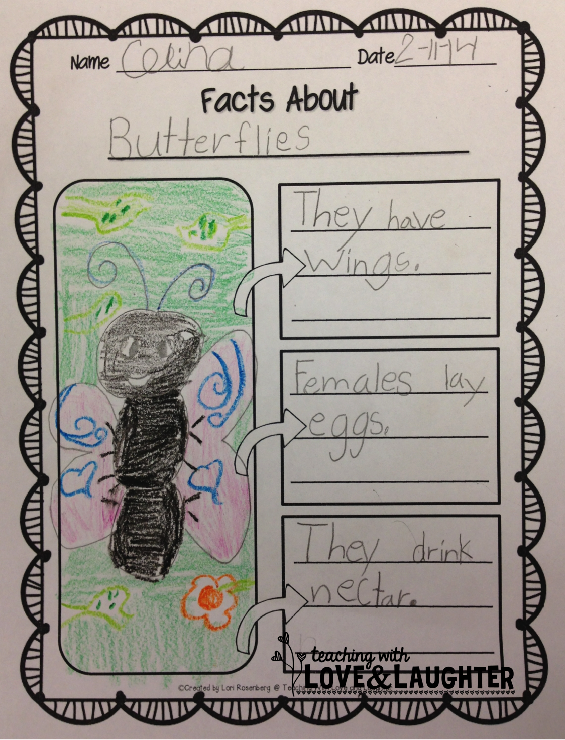 Let S Label Write And Draw About Insects
