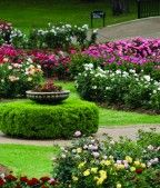 Tyler Municipal Rose Garden Welcome To Tyler Texas Garden Visits Garden Garden Features