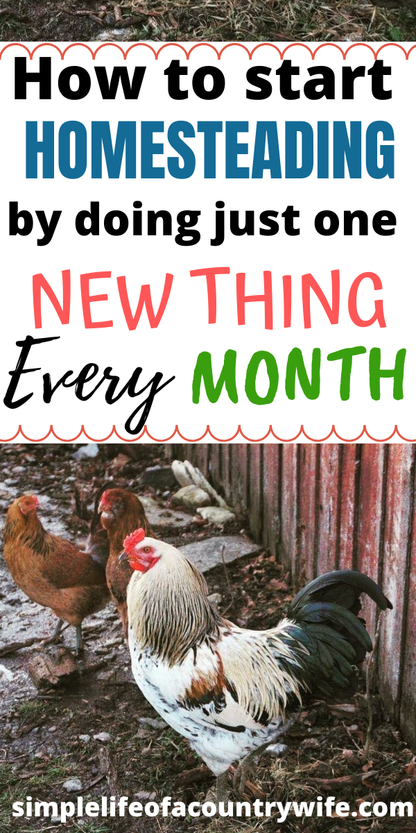 Start homesteading with one new thing every month