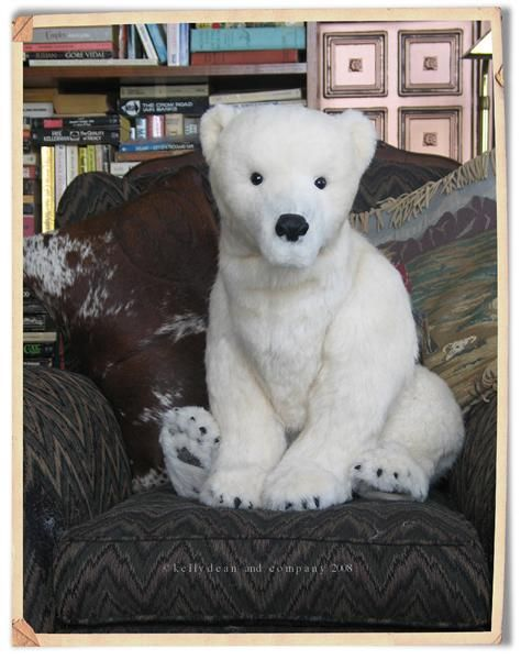 Percy the Polar Bear