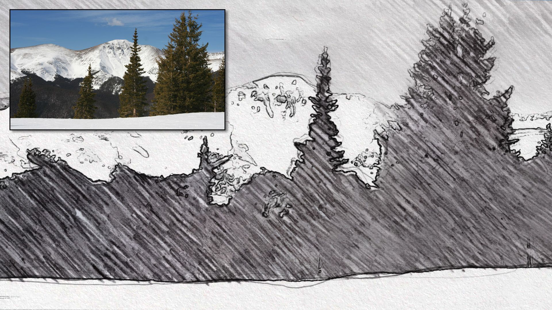 A pencil sketch drawing effect applied to an image using creation art effects which is an after effects template i created for turning video footage into
