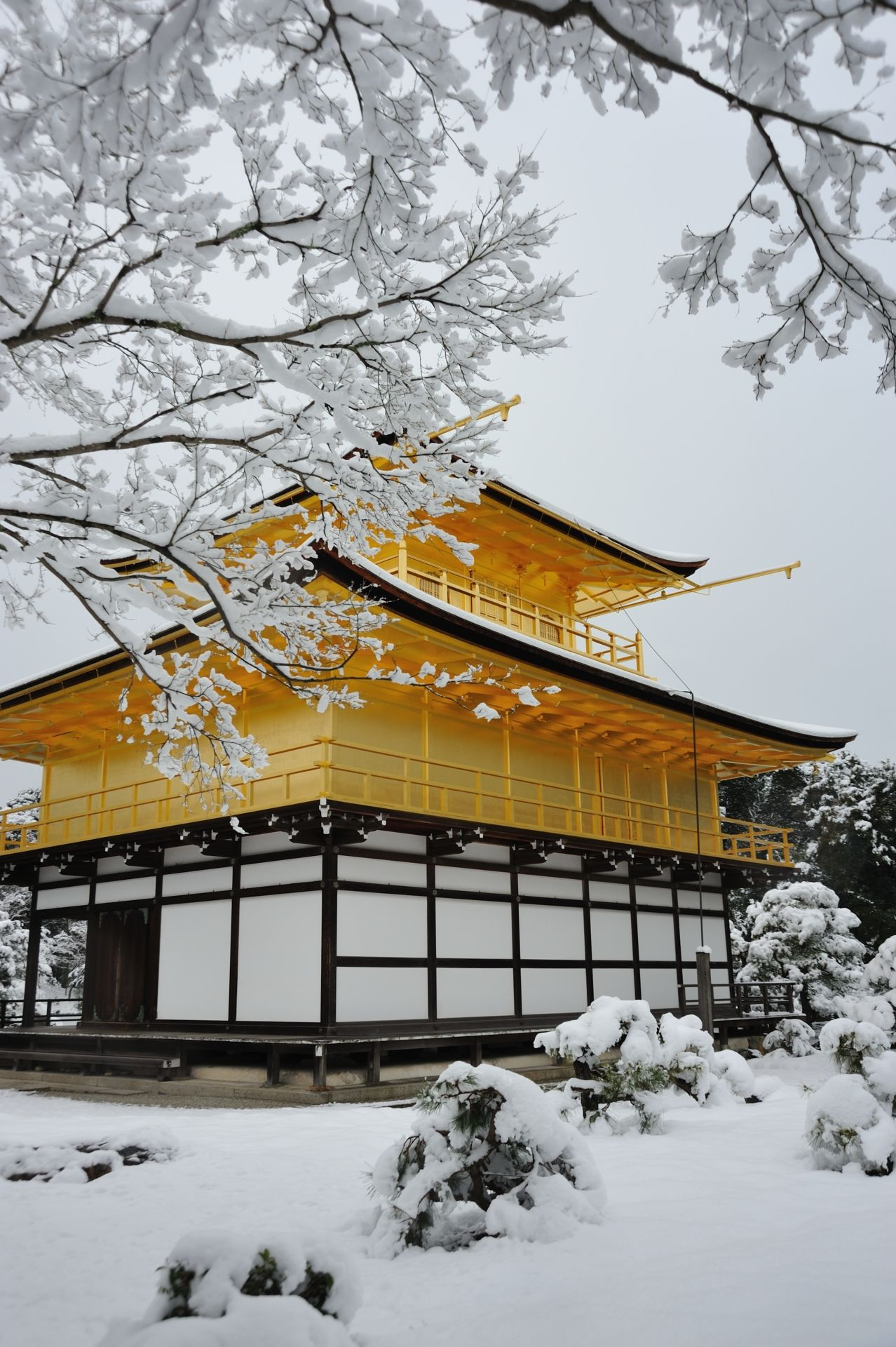 Kinkaku-ji (Rukon-ji), Kyoto, Japan | The World in the ...