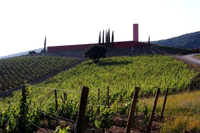 Wine And Architecture Roccia