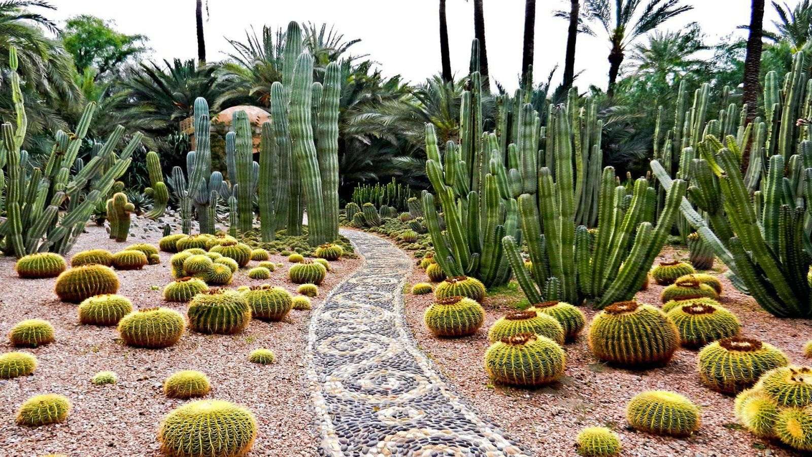 desert rose villa, marrakech (With images) Simple garden