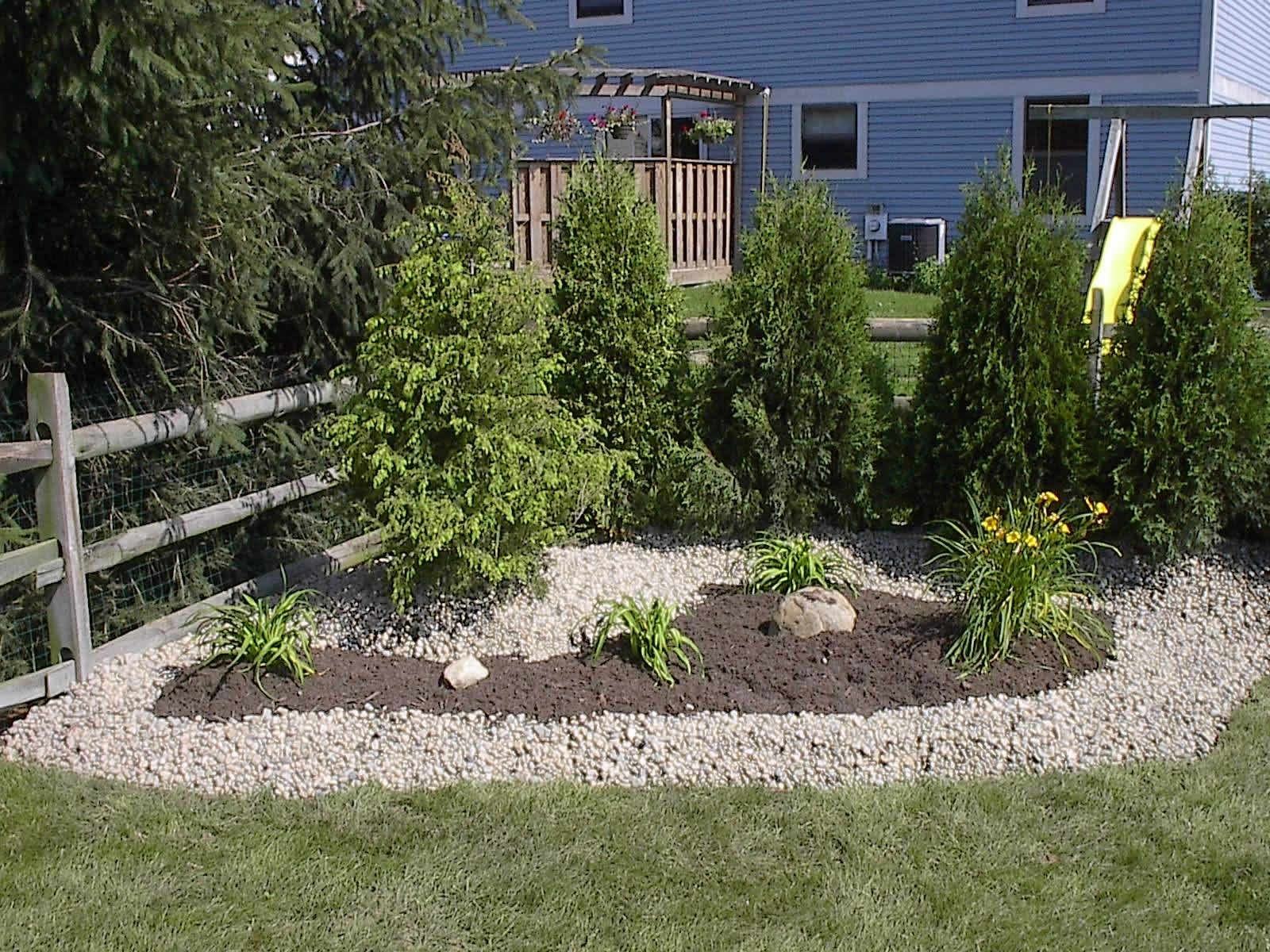 small trees landscaping