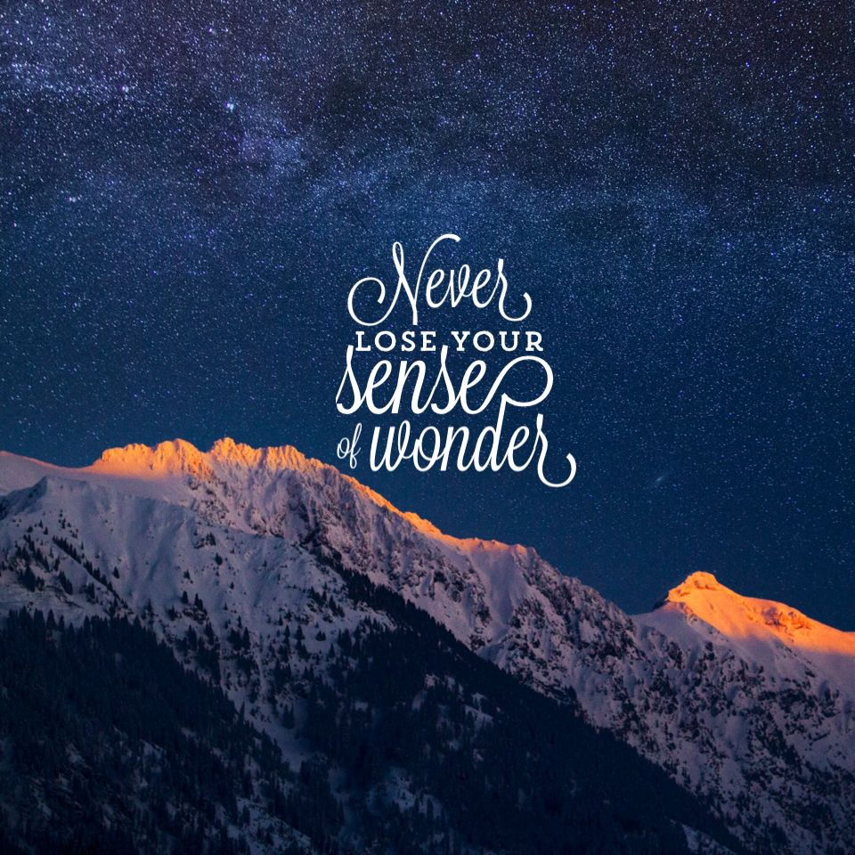Quotes About Wonder: Never Lose Your Sense Of Wonder. #Quotes