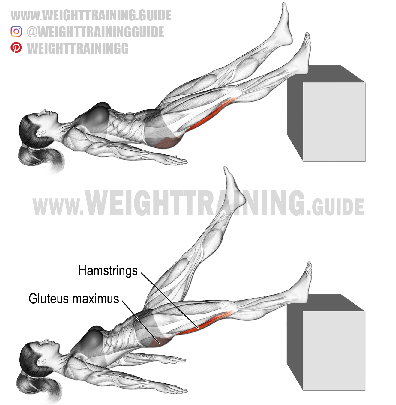 Lying single straight-leg hip extension instructions and