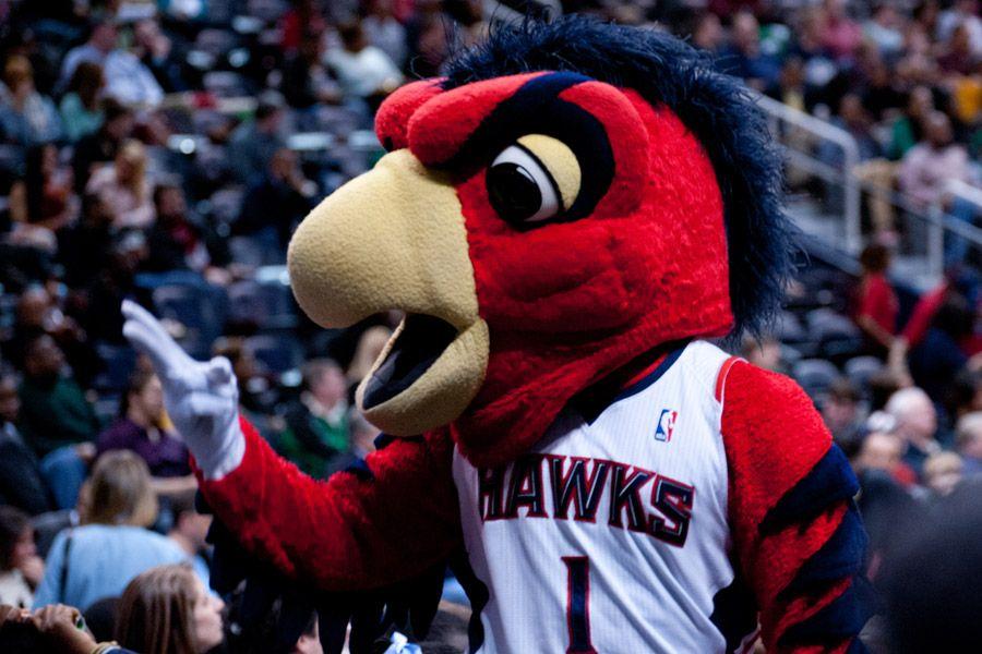 Harry the hawk atlanta hawks mascot mascot atlanta