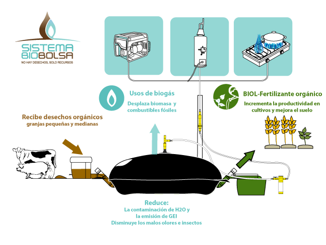 Sistema Biobolsa Renewable Energy Systems Biomass Energy Renewable Energy Technology