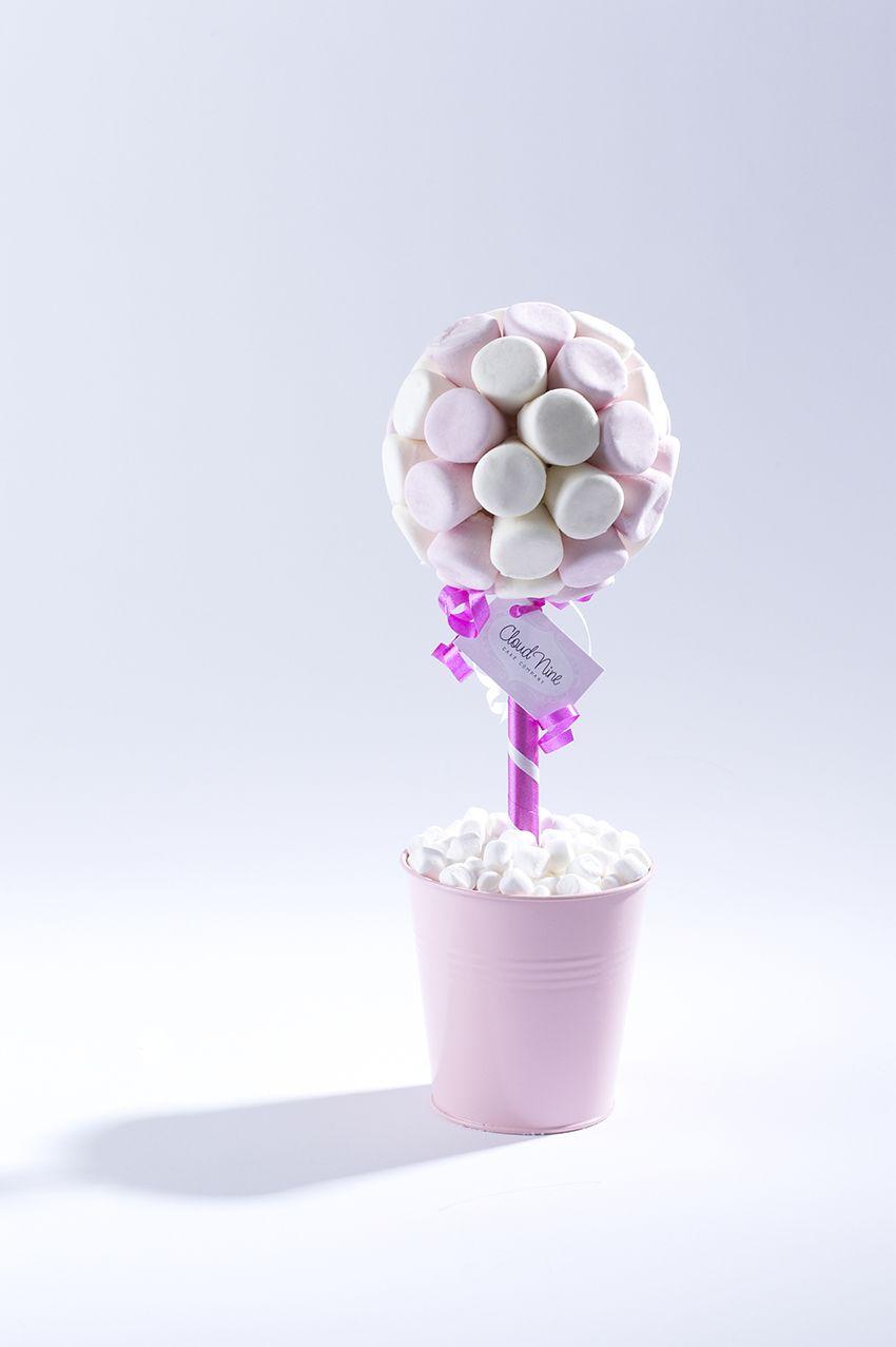 Small marshmallow sweet tree