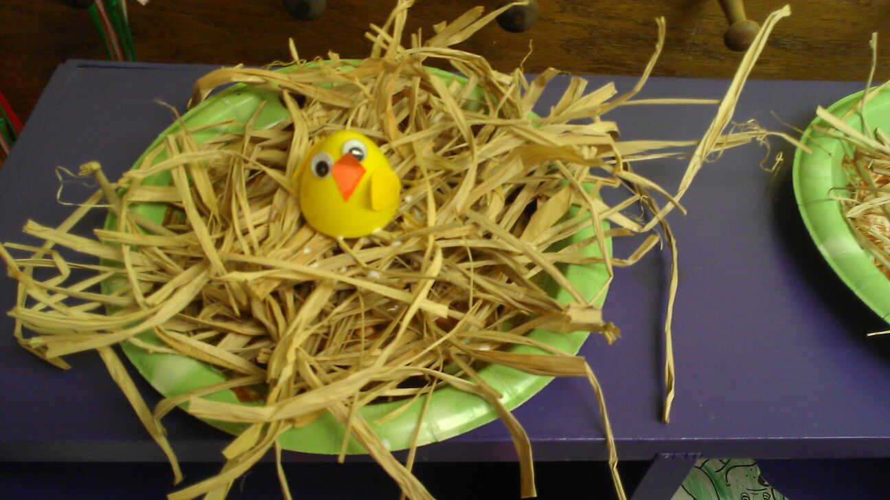 To celebrate Spring, we made a baby bird craft.  We used a paper plate as the base, painted the bottom brown, glued raffia grass on it and glued on the top of a plastic egg as the baby chick/bird.  We finished it off with paper wings, paper beak, and googly eyes..  They turned out super cute!
