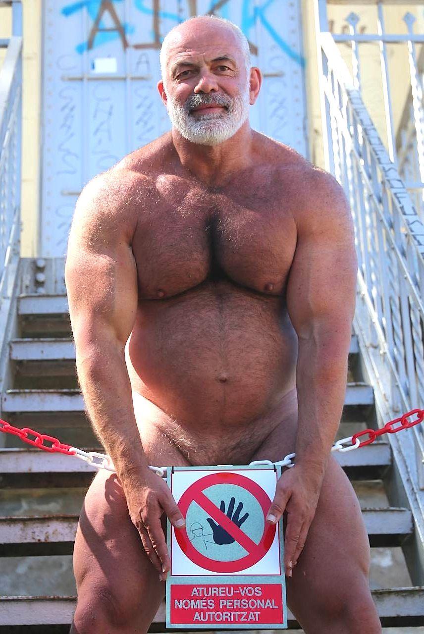 Bear gay mature