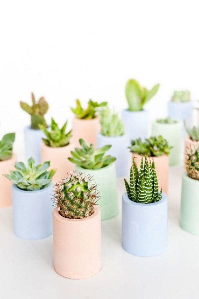 75 Simple Cactus Decor Ideas For Your Home Decoration