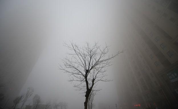 שיא מדאיג ברמות הפחמן הדו-חמצני באטמוספירה - חדשות 2 - רשת