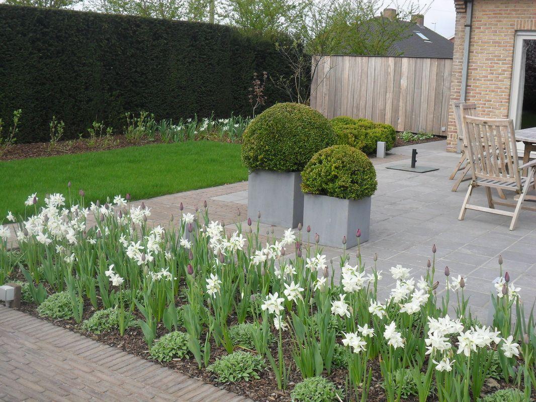 Realisaties tuinaanleg tuinen michiel vanlede tuinaanleg pinterest html - Eigentijdse landscaping ...