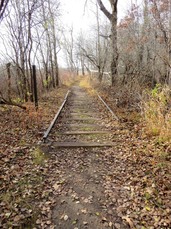 Photo gallery of Scuppernong Springs Nature Trail in Eagle, WI