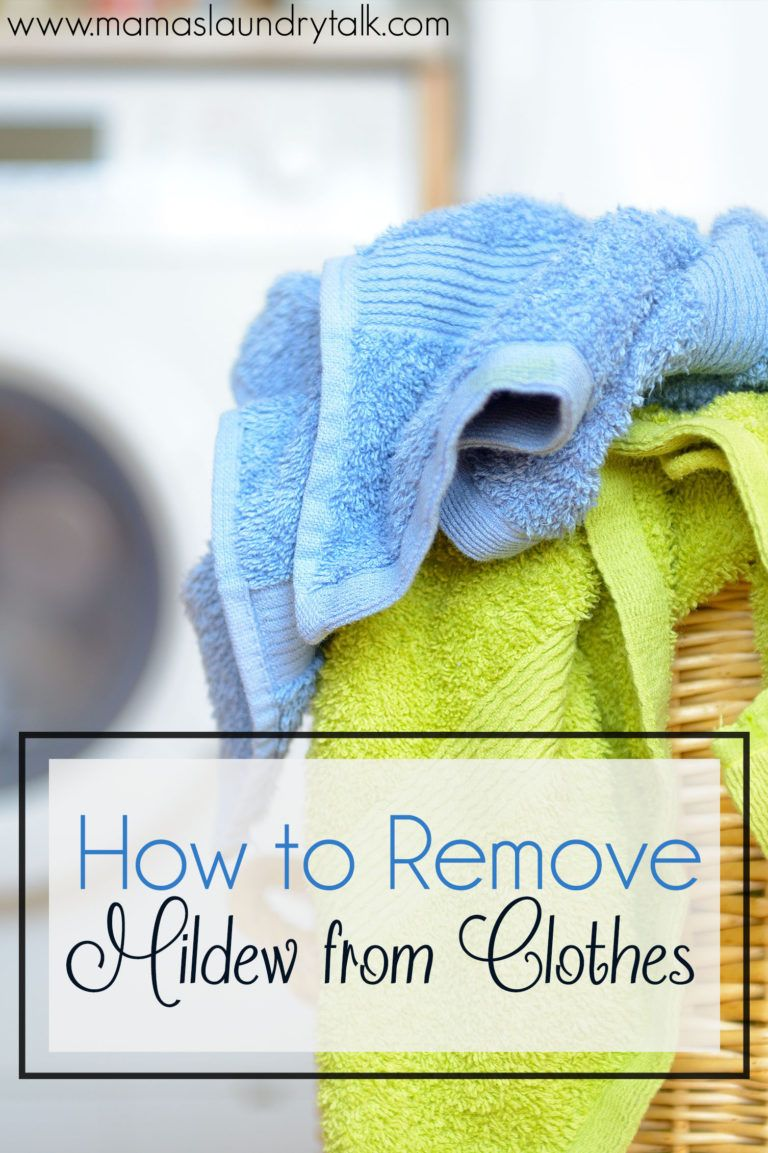 How to Remove Mold and Mildew from Clothes Mildew stains