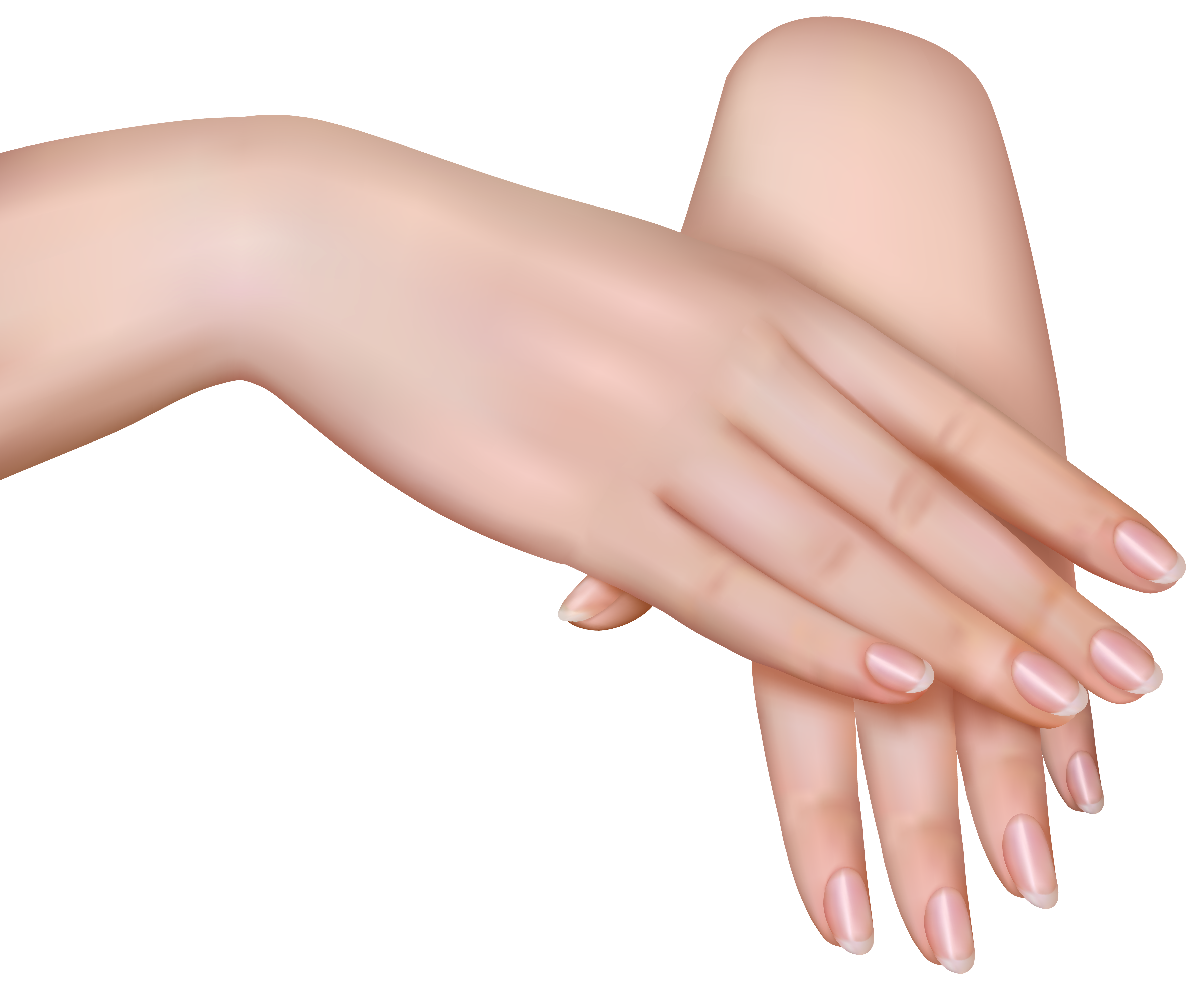 Female Hands Png Clipart Image Gallery Yopriceville High Quality Images And Transparent Png Free Clipart Free Clip Art Clip Art Clipart Images