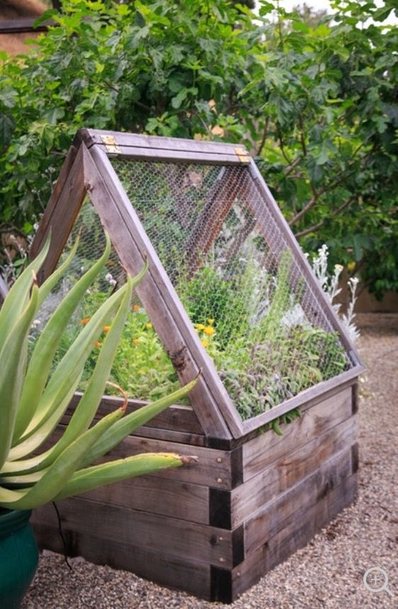 Raised Vegetable Garden Beds With Hinged Screen Frames With