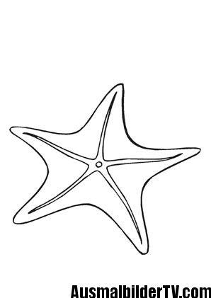 seestern ausmalbild malvorlage | meerestiere, ausmalen