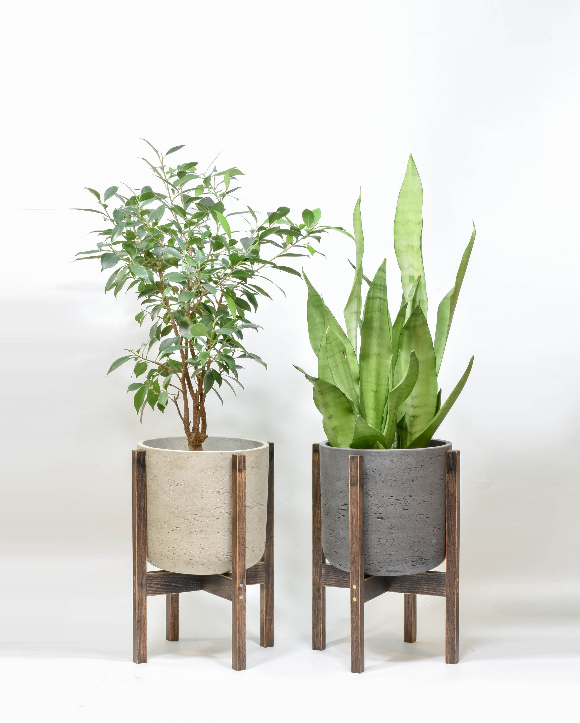 Plant Stand With Cement Pot Large Cement Planter Indoor Plant