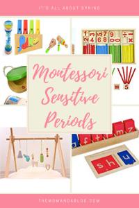montessori sensitive period for language