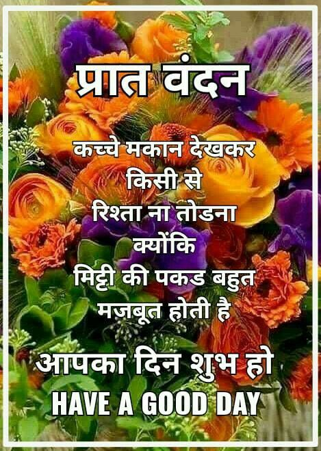 Pin by RADHIKA on Flowers (With images)   Good morning ...