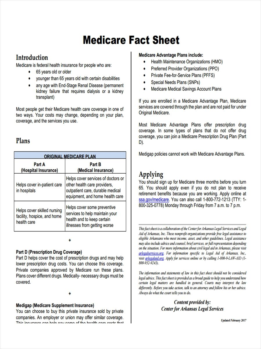 Free 19 Fact Sheet Examples Samples In Word Pages Pdf For Fact Sheet Template Microsoft Word Fact Sheet Facts Genogram Template