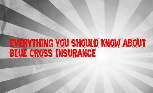 Everything You Should Know About Blue Cross Insurance Dental