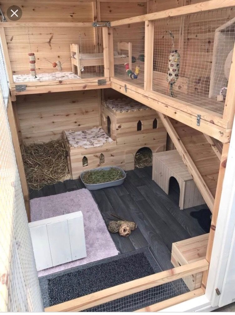 Pin By Anika Nai Lana Hayes On Rabbit Hutch Bunny Hutch Pet Rabbit Rabbit Shed