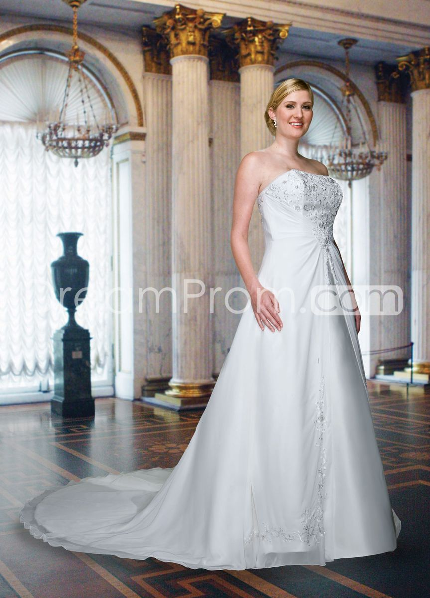 Gorgeous aline strapless floorlength cathedral embroidery plus