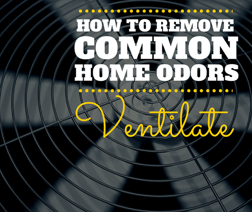 How to Remove Common Home Odors Ventilate ♥ Loved and