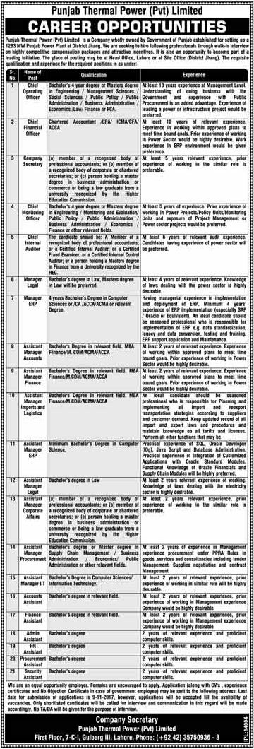 Punjab Thermal Power Private Limited Jobs 2017 In Lahore For - chief executive officer job description