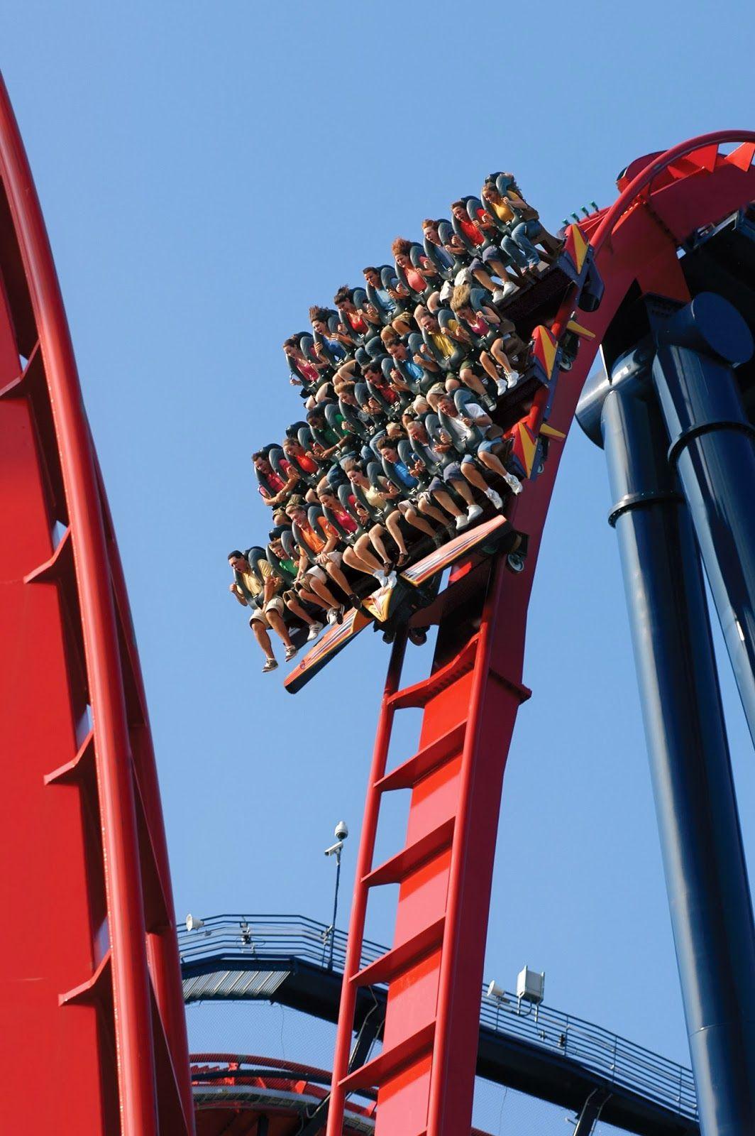 767f75be231562a441c79844d819a75e - Sheikra Roller Coaster At Busch Gardens