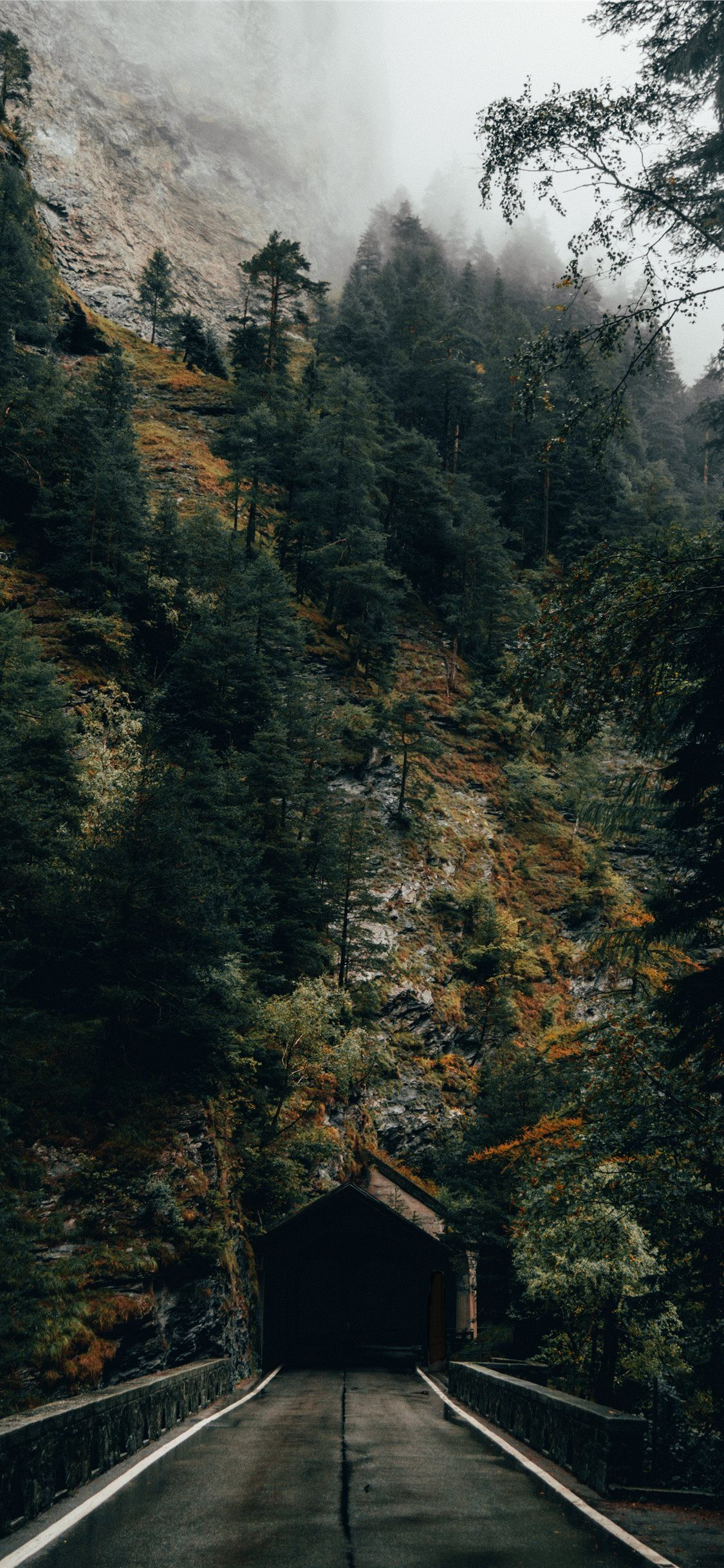 Iphone Xr Wallpaper Autumn Ipcwallpapers In 2020 Iphone Wallpaper Travel Autumn Forest Forest Wallpaper