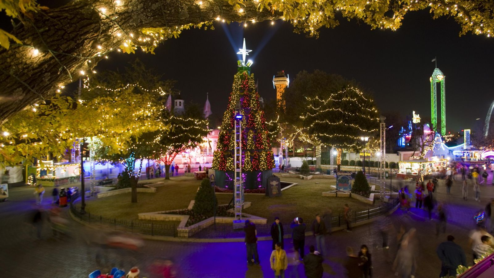 the ultimate and best christmas light displays in dfw for 2014 fort worth