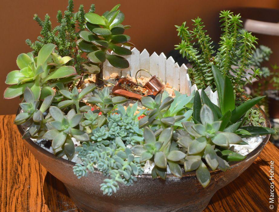 mini jardim vaso de barro - Pesquisa Google Gazebo ...