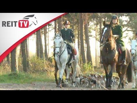 Mit Pferd und Hund über Stock und Stein - Die Schleppjagd - YouTube