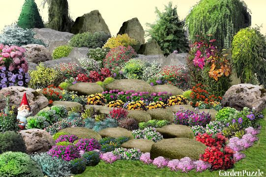 Kolorowy Skalniak Lato Plants Garden Flowers